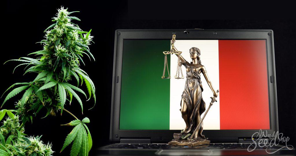 legge sulla cannabis light